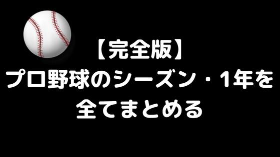【完全版】プロ野球シーズン・1年の流れを野球初心者向けに全てまとめた【解説】