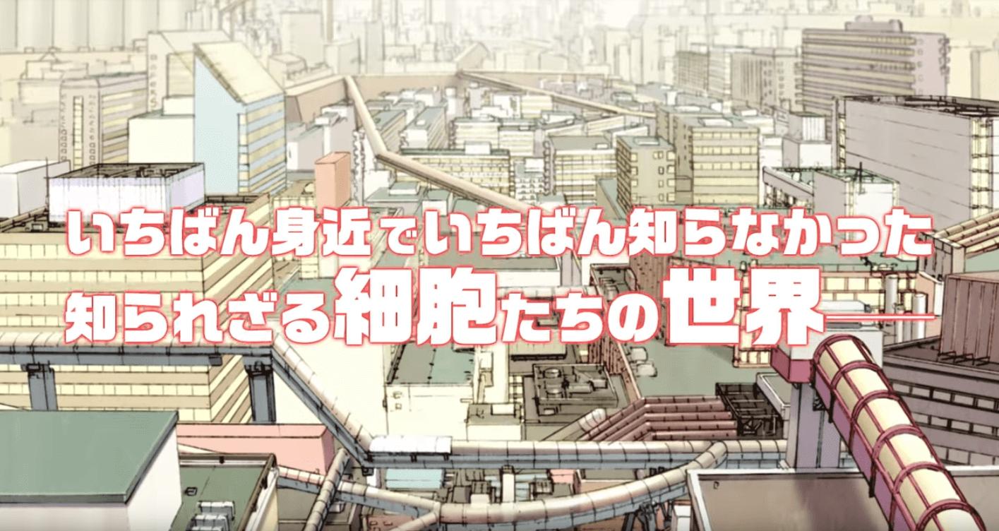 <TVアニメ『はたらく細胞』>が無料で見放題(見逃し)の動画配信サイトは?【U-NEXT/Hulu/dTV】