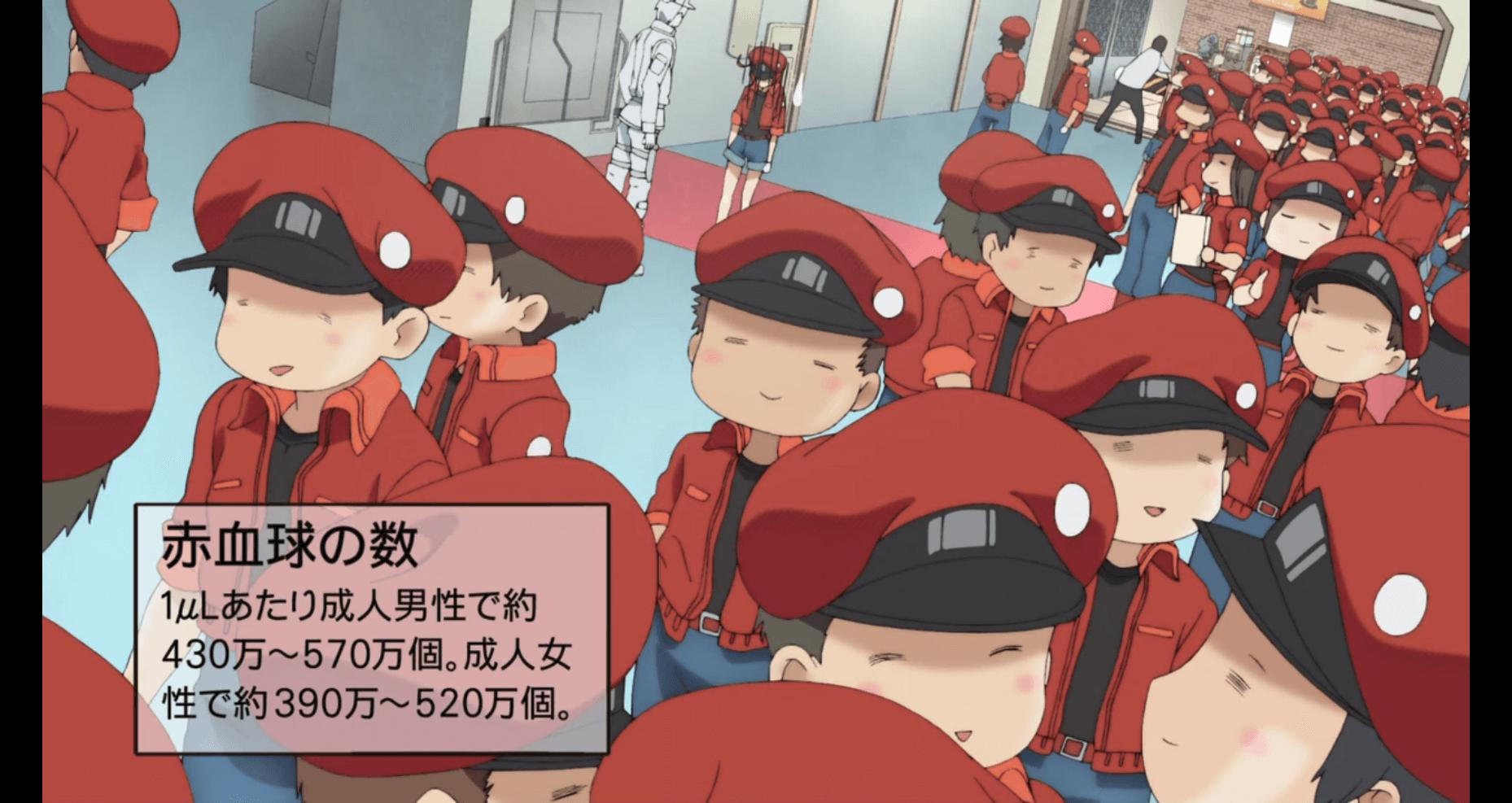 はたらく細胞 アニメ 画像