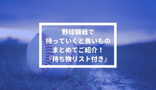 【持ち物リスト付き】プロ野球観戦に持っていくと良いもの・アイテムまとめ【事前準備・怒られる物】